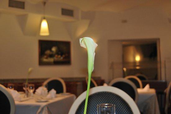 Monika Centrum Hotel: ресторан