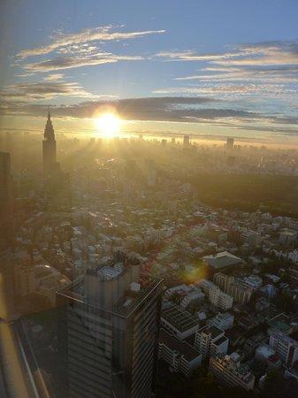 Park Hyatt Tokyo: vue depuis ma chambre au 43 étage, au petit matin