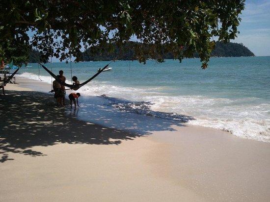 Coral Beach : the beach