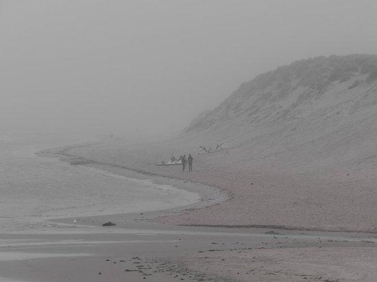 Plaje Wissant