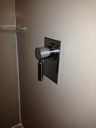 Hilton Garden Inn Florence Novoli : Pull the bottom of the handle away from the wall to activate ceiling-mounted shower head.
