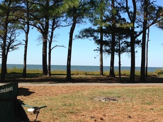 Cherrystone Family Camping Resort: view from campsite