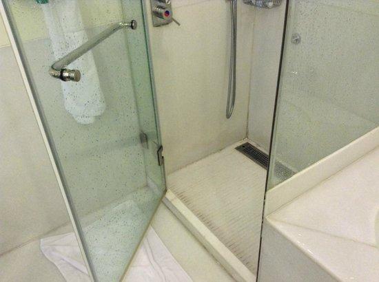 ITC Kakatiya: shower door problem