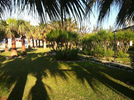 Washington Resort Hotel & Spa : Garten am Strand