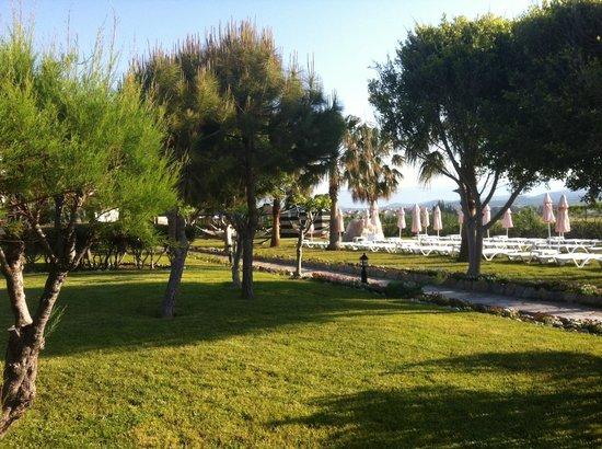 Washington Resort Hotel & Spa : Garten zum Strand