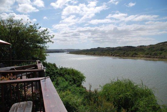 Dungbeetle River Lodge: Blick von der Terasse