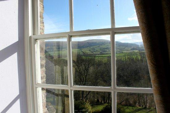 Peterstone Court Hotel: View