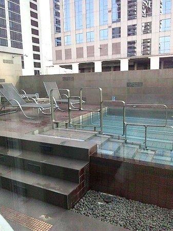 Amora Neoluxe : 屋上のプール