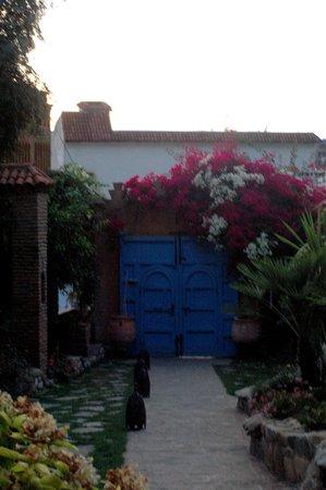 Dar Echchaouen: Eingangsbereich