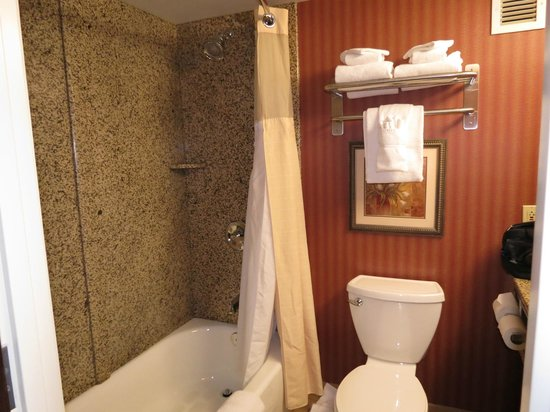 Holiday Inn Hotel & Suites Rochester - Marketplace: Roomy and clean.