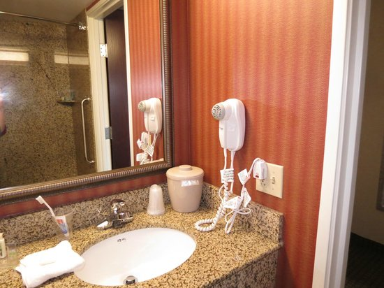 Holiday Inn Hotel & Suites Rochester - Marketplace: Large counter space in bathroom