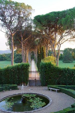 Residenza Strozzi: Entrance