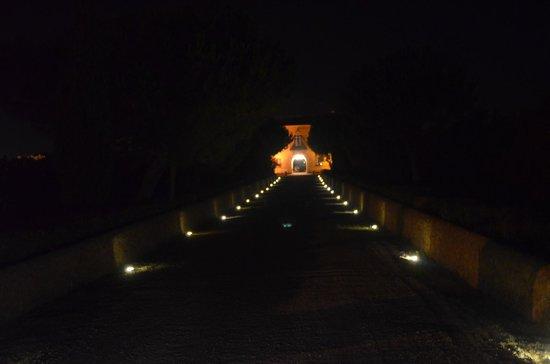 Fattoria Il Borghetto: Die romantisch beleuchtete Auffahrt bei Nacht.