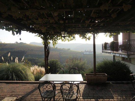 Ada Nada Agriturismo: terrassen dækket af vin