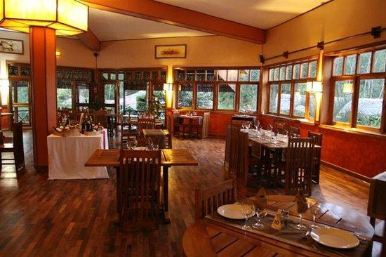 Andasibe Hotel: food's ok. I had a steak