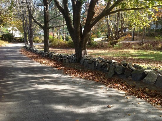 The Lodge on the Cove: a meandering walk on a side street