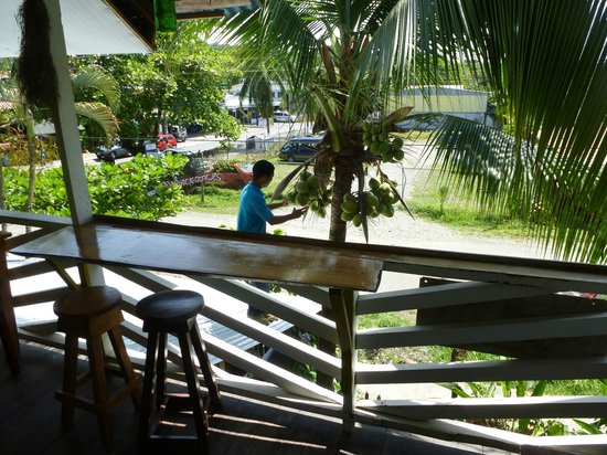 Veronica's Place : Chopping down a coconut for me