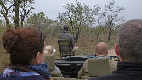 Arathusa Safari Lodge: Chris, our tracker, in search of leopard.