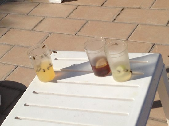 Adriana Beach Club Hotel Resort: Drinks after lacing then for 2 mins!