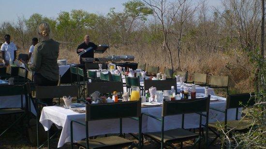 Arathusa Safari Lodge: Final breakfast, out in the bush