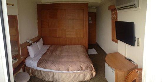 Sun Moon Lake Apollo Resort Hotel: 房間實景1