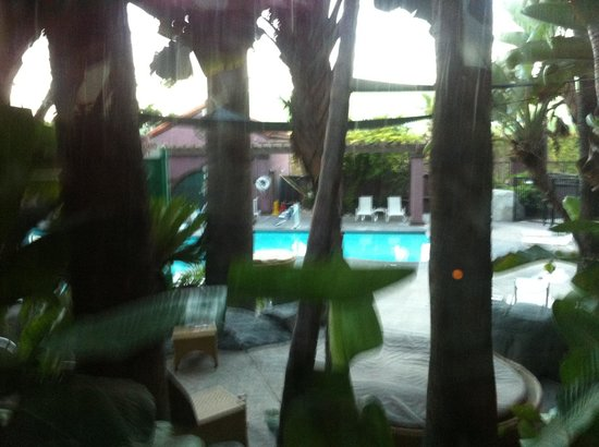 Hotel Menage : Pool area is really beautiful.