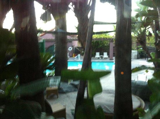 Hotel Menage: Pool area is really beautiful.