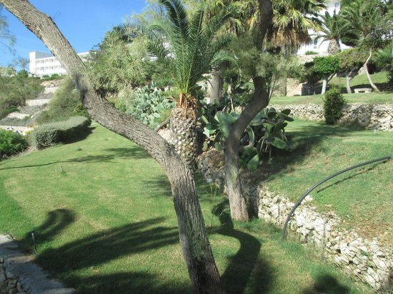 Mellieha Bay Hotel: jardin hotel
