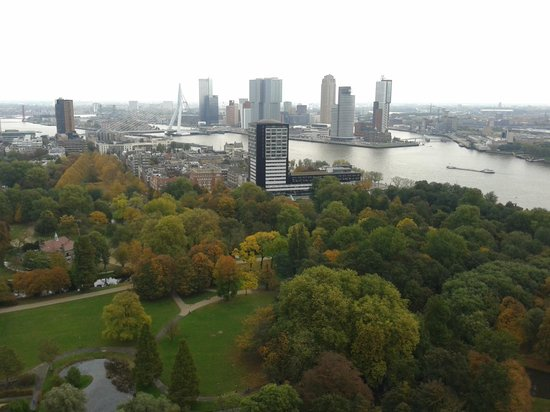 Euromast Tower: Fabulous views over the port