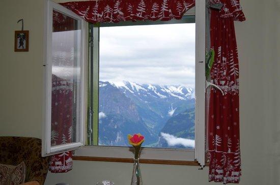 Berghotel Schynige Platte : View from Room