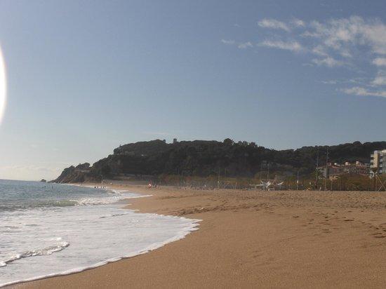 Atzavara Apartments: la plage de Calella
