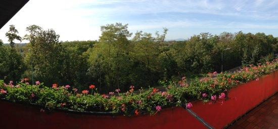 Kaiserhof Hotel & Restaurant: Wunderschöner Ausblick aus dem 'Schwalbennest'