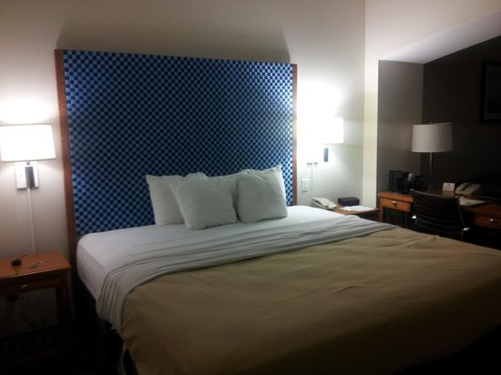 Comfort Inn & Suites Savannah Airport: the Bed