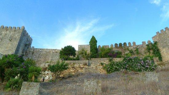 Complejo Turistico Castillo Castellar: MURALLAS