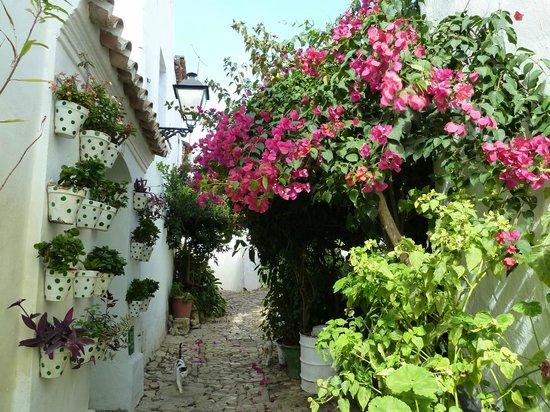 Complejo Turistico Castillo Castellar: calles del puebo