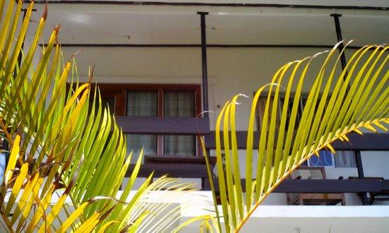 Chez Lorna: lorna's house