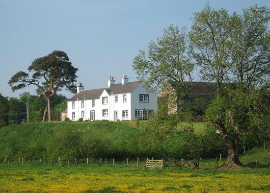 Billerwell Farm Bed & Breakfast: Billerwell in Summer