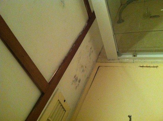 Hotel Venetur Maracaibo: Bathroom cieling