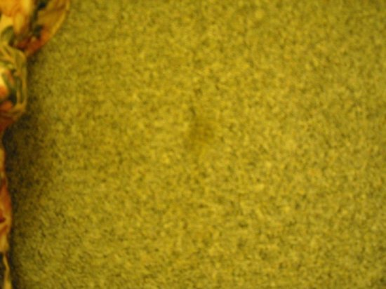Inn Town Motel: Stain on carpet next to the bed