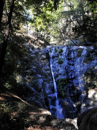Pfeiffer Big Sur State Park : Pfeiffer Falls