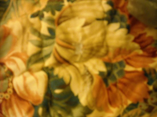 Inn Town Motel: It's hard to see, but there is a burn hole in the middle of the flower on the bedspread