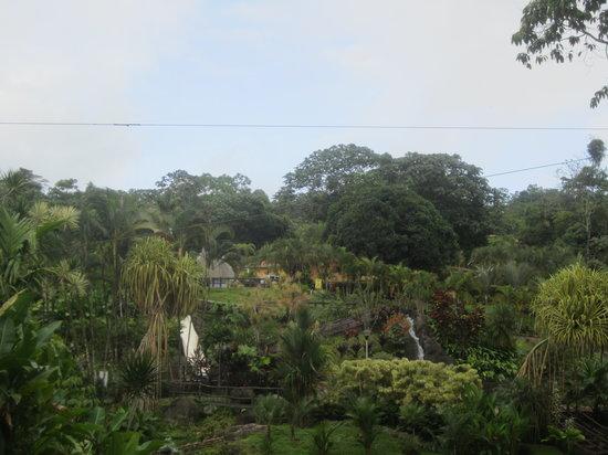 Los Lagos Hotel Spa & Resort: Vista desde la cafetería