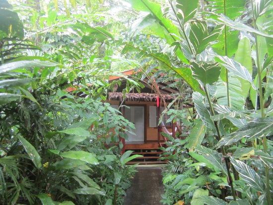 Namuwoki Lodge: Llegada a la cabaña