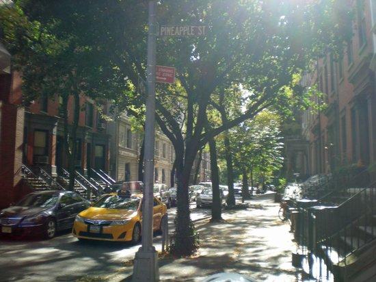 Bikelyn Tours: Brooklyn