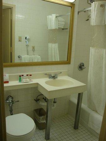 Ramada Jersey City : bathroom