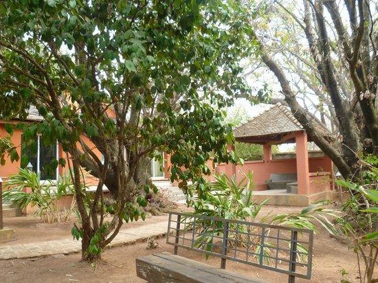 Hotel Au bois vert : Le jardin