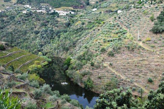 Quinta do Panascal : Vista do Vale
