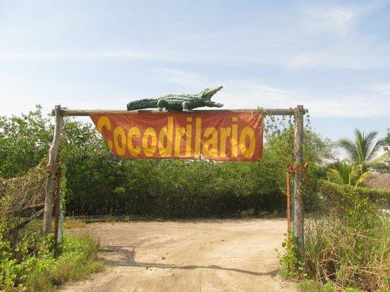 Santuario de Cocodrilos El Cora