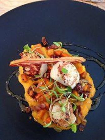 Rockpool Cafe: Delicious Griddled Scallops with Pumpkin Puree and Pancetta