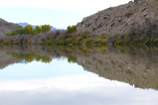 Moab Rafting and Canoe Company - Day Tour: fall colors at the Colorado River